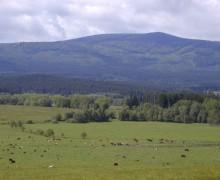 Šumava, okolí penzionu U lípy