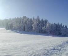 Lipno in Winter